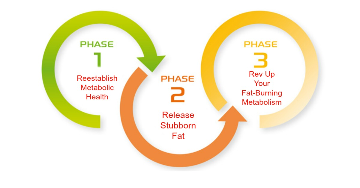 3 Phase Nutrition Plan to Fix Your Metabolism