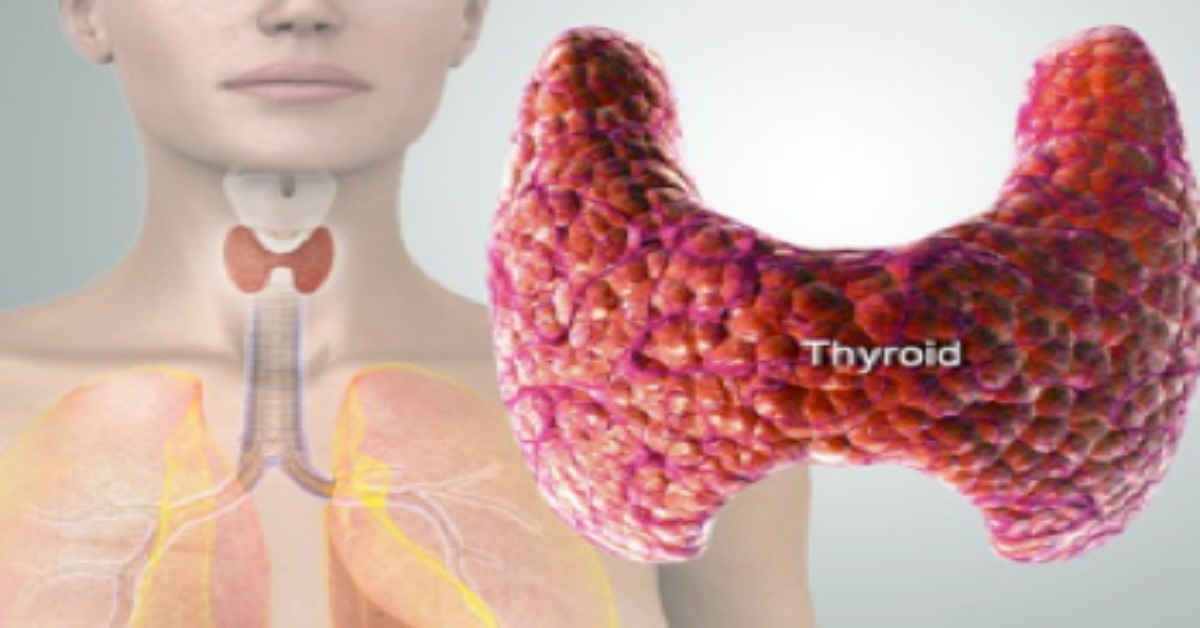 Reset Your Thyroid In 7 Days to Burn Fat and Activate Your Metabolism